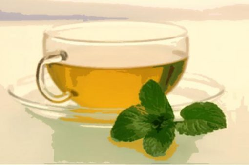 green tea e Liquid