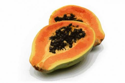 papaya e-jucie